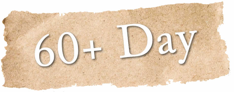 60 Plus Day